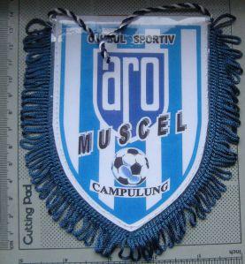 clubul sportiv Aro - Campulung Muscel